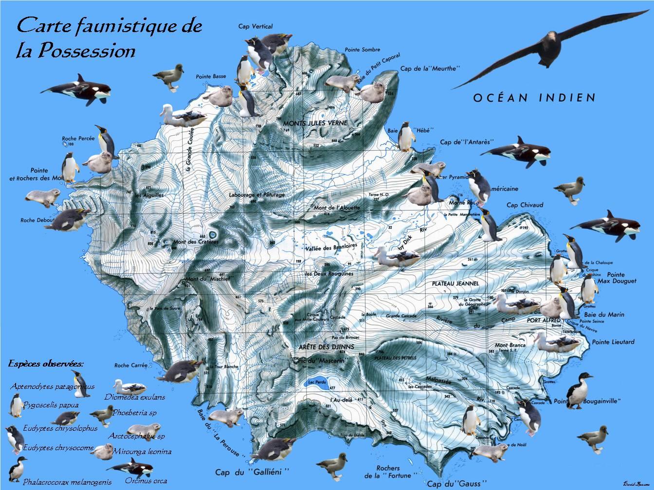 Crozet Islands
